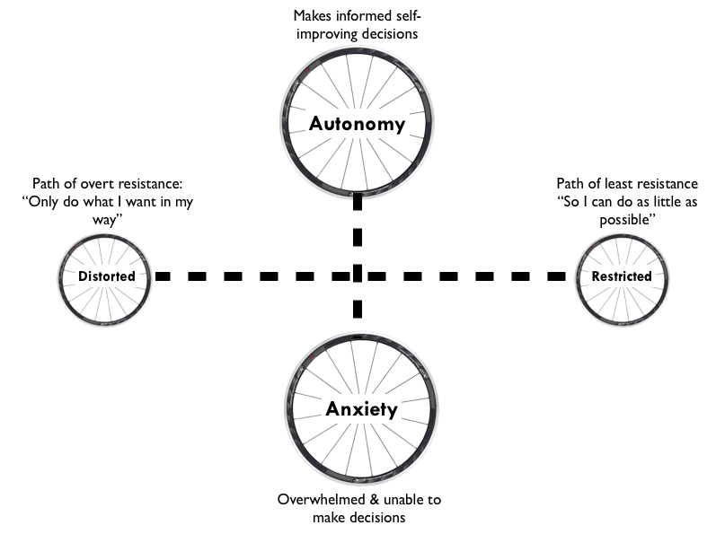 braving paths towards learner authonomy 2 Article braving paths towards learner autonomy: make the most of your feel lessons lenore gauchely queries hartmann autonomy is understood by many as the ability to.